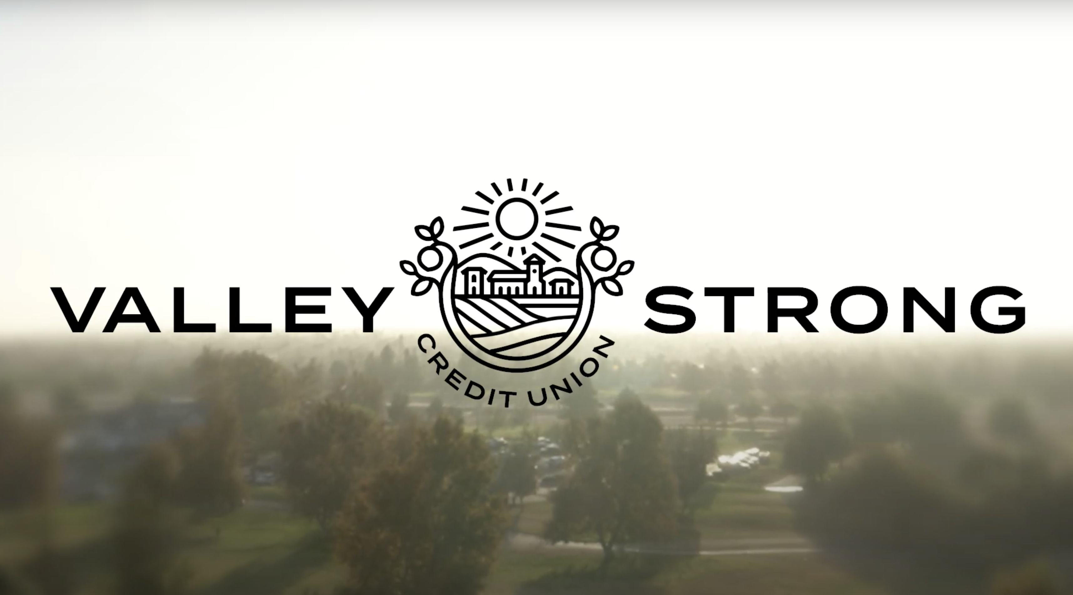 Valley Strong CU Brand Launch.png